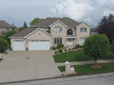 Orland Park Single Family Home For Sale: 17329 Antler Drive