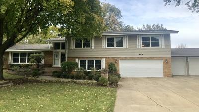 Glen Ellyn Single Family Home For Sale: 22w344 Glen Park Road