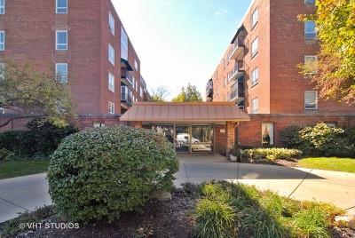Aurora Condo/Townhouse For Sale: 450 West Downer Place #4E