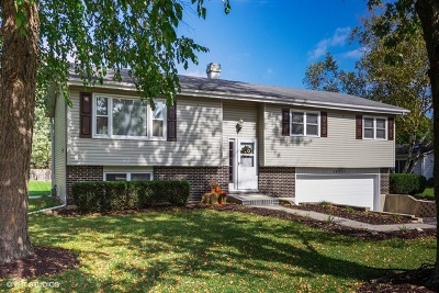 Naperville Rental For Rent: 24330 West Blvd De John Boulevard