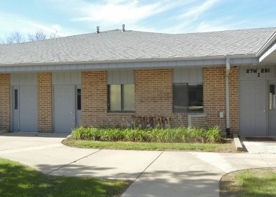 Winfield Commercial For Sale: 27w291 Geneva Road #I