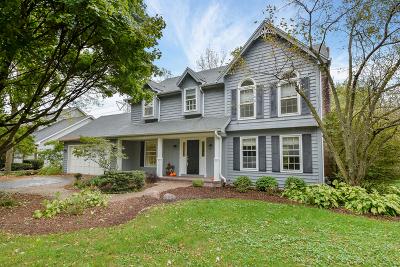 Glen Ellyn Single Family Home For Sale: 991 Chapel Court