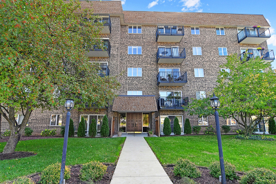 Downers Grove Condo/Townhouse For Sale: 907 Curtiss Street #206