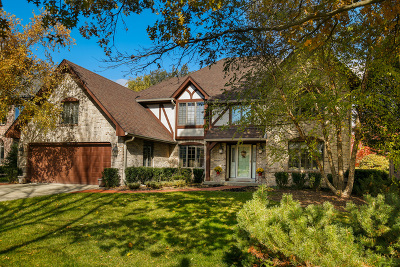 Darien Single Family Home For Sale: 1712 Lakeview Drive