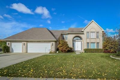 Buffalo Grove Single Family Home For Sale: 2820 Daulton Drive