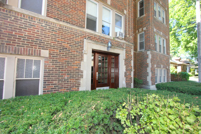 Oak Park Condo/Townhouse For Sale: 841 Clarence Avenue #3