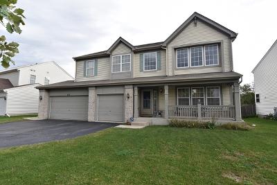 Pingree Grove Single Family Home New: 852 Dover Street
