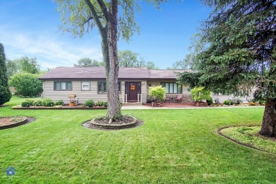 Palos Hills Single Family Home For Sale: 7951 West 99th Place