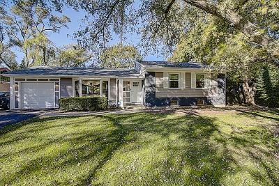Deerfield Single Family Home For Sale: 710 Pine Street