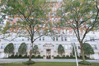 Chicago IL Condo/Townhouse New: $1,500,000
