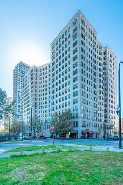 Chicago IL Condo/Townhouse New: $675,000
