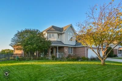 New Lenox Single Family Home For Sale: 1185 Sierra Rdg Drive