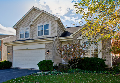 Grayslake Single Family Home For Sale: 51 Highland Road