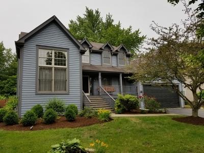 Glen Ellyn Single Family Home For Sale: 137 Derby Glen Drive