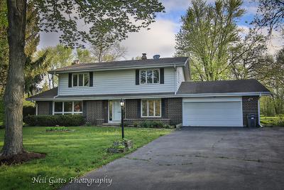 Elgin Single Family Home For Sale: 39w364 Romeo Circle