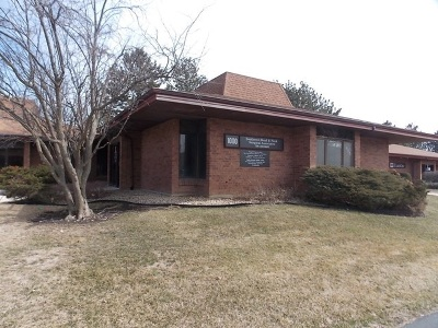 Tinley Park, Orland Park Commercial For Sale: 1000 Ravinia Place