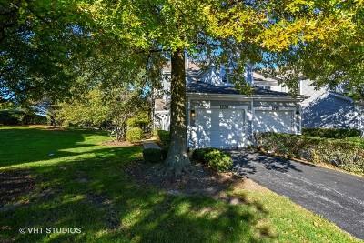 Naperville Condo/Townhouse For Sale: 1276 Tennyson Lane #1276