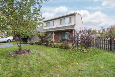 Naperville Single Family Home For Sale: 1267 Old Mill Court