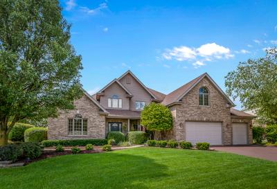 Frankfort Single Family Home For Sale: 22380 Prairie Trail Lane