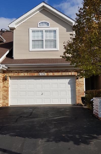Schaumburg Condo/Townhouse For Sale: 1325 Leonard Drive