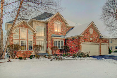 Naperville Single Family Home For Sale: 2208 Skylane Drive