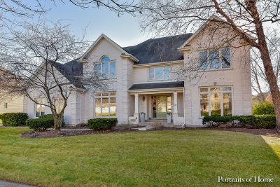Naperville Single Family Home For Sale: 1732 Robert Lane