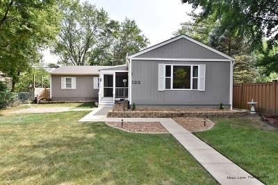Westmont Single Family Home For Sale: 133 North Park Street