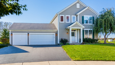 Bolingbrook Single Family Home For Sale: 250 Fox Bend Circle