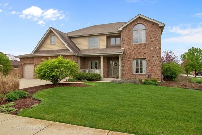 Frankfort Single Family Home For Sale: 22374 Woodland Lane