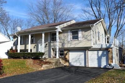 Buffalo Grove Single Family Home For Sale: 940 Indian Spring Lane