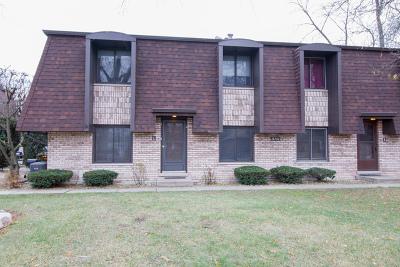 Oak Forest Condo/Townhouse New: 15742 Laramie Avenue #L