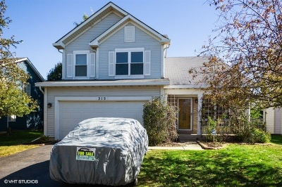 Romeoville Single Family Home For Sale: 315 Wallace Way