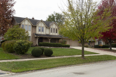 St. Charles Single Family Home For Sale: 24 Stirrup Cup Court