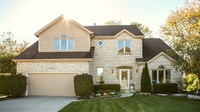Elgin IL Single Family Home New: $329,900