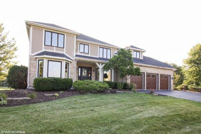 Naperville Single Family Home For Sale: 24104 Ascot Court