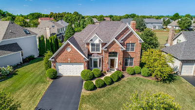 Single Family Home For Sale: 817 Wingfoot Drive