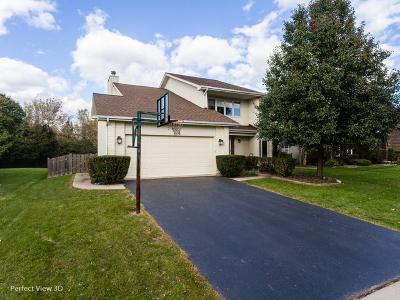 Buffalo Grove Single Family Home For Sale: 795 Horatio Boulevard