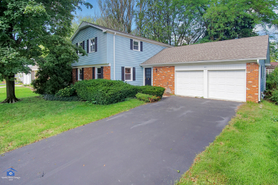 Buffalo Grove Single Family Home For Sale: 831 Twisted Oak Lane