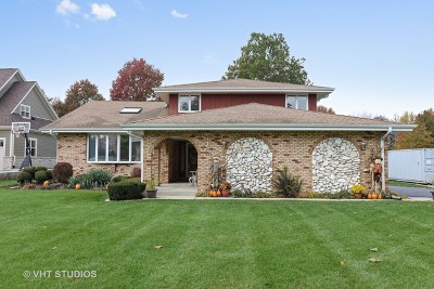 Lemont Single Family Home For Sale: 13140 Derby Road