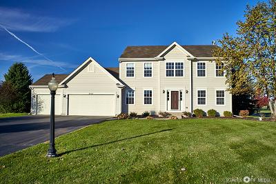 Spring Grove Single Family Home For Sale: 9103 Daniel Lane
