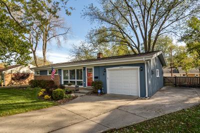 Palatine Single Family Home For Sale: 223 South Hart Street