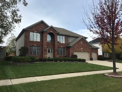 Naperville Single Family Home For Sale: 3419 Redwing Drive
