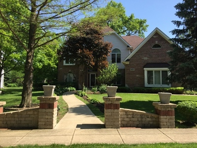 Naperville Single Family Home For Sale: 24w501 Ohio Street