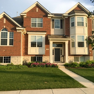 Naperville Condo/Townhouse For Sale: 2554 Dunraven Avenue #2544