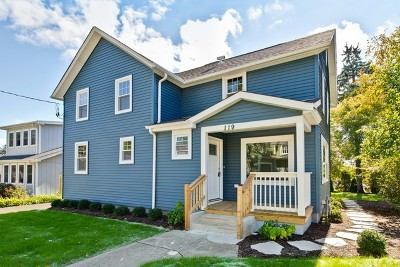Libertyville Single Family Home For Sale: 119 Appley Avenue