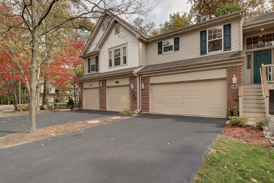 Streamwood Condo/Townhouse For Sale: 105 Meredith Lane