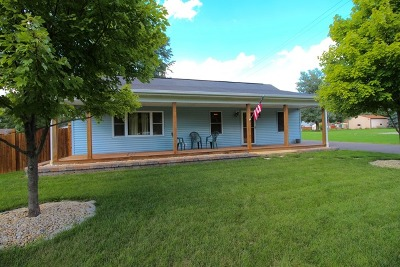 New Lenox Single Family Home For Sale: 227 West Michigan Road