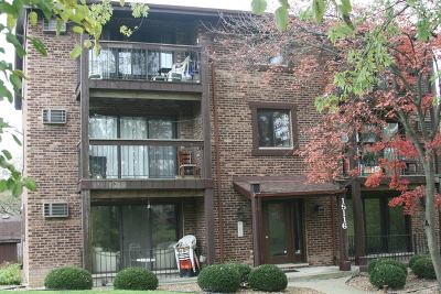 Orland Park Rental For Rent: 15116 Quail Hollow Drive #1S