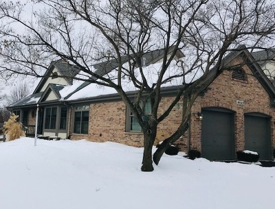 Orland Park Condo/Townhouse For Sale: 14512 Lake Ridge Road