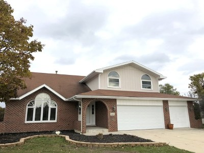 Tinley Park Single Family Home For Sale: 8424 Brookpoint Court